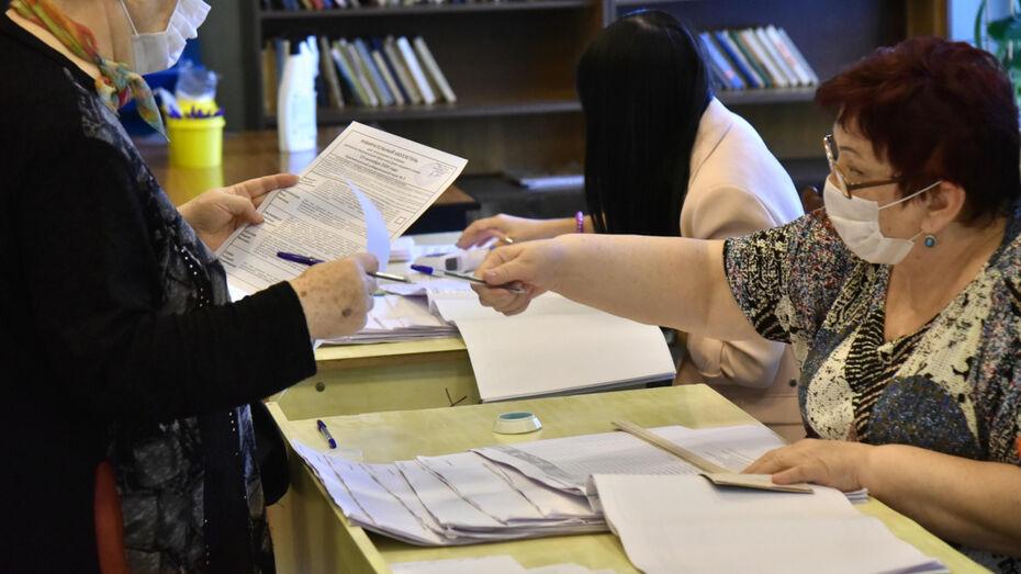 В Общественной палате подвели итоги досрочного голосования в Воронежской области