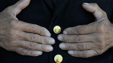 Трудиться на пенсии по специальности хотели бы 84% работающих мужчин-пенсионеров в Воронеже
