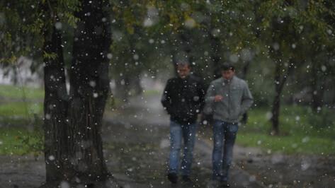 Метеорологи пообещали потепление в Воронеже на последней неделе осени