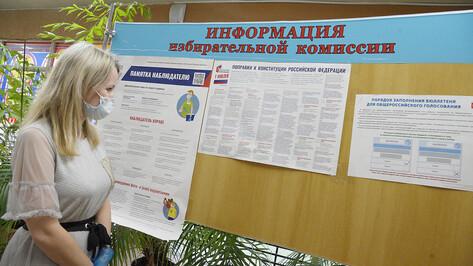 Без происшествий. В Воронеже прошел 1-й день голосования по поправкам в Конституцию
