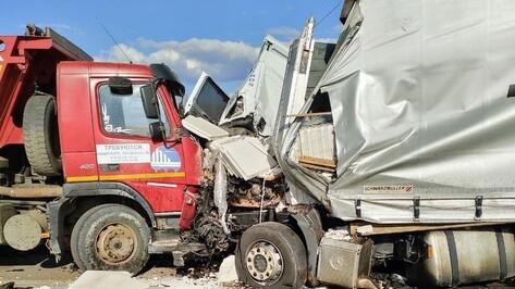 Три человека пострадали в аварии со слетевшей с трассы фурой в Воронежской области