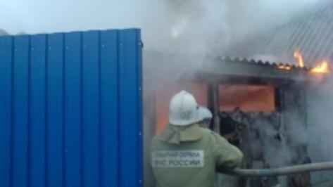 В Богучаре сгорел гараж с машиной