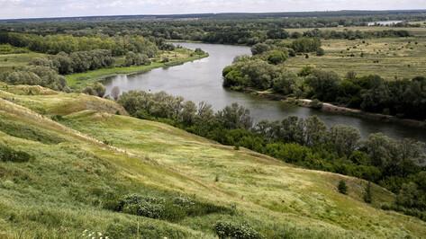 Состояние берегов реки Дон в районе Павловска проверят до 1 декабря 2019 года
