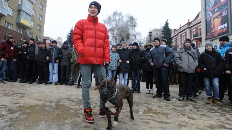 Воронежские правозащитники утверждают, что им угрожают гомофобы