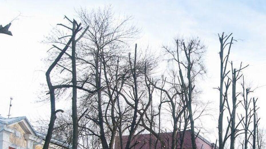 В Воронеже на 8 дней перекроют часть улицы Острогожская