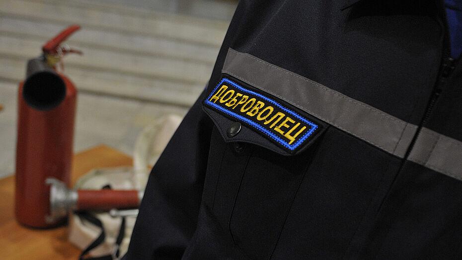 Воронежские добровольцы спасли 26 человек на пожарах в 2015 году