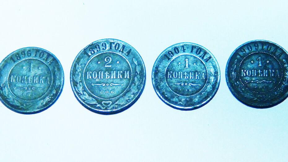 Таловский краевед нашел 4 дореволюционные монеты на территории природного заповедника