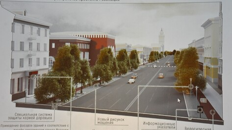 Мэрия Воронежа презентовала проект пешеходного маршрута по центру города