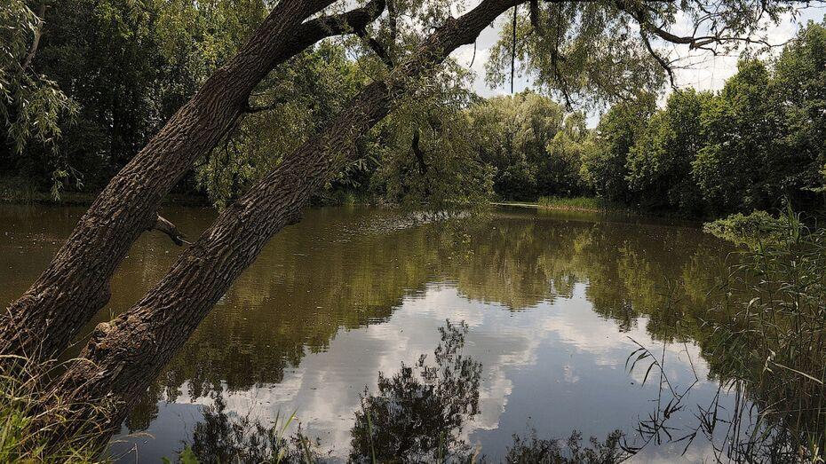 В Воронежской области из реки достали тело 80-летнего мужчины
