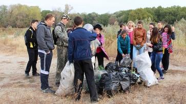 Поворинцы завершили акцию «Чистый берег»
