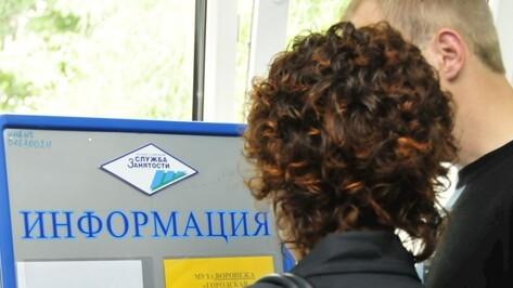 В Воронеже выросло число ищущих работу студентов