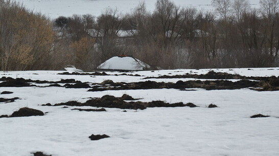 Мужчина замерз насмерть в Воронежской области