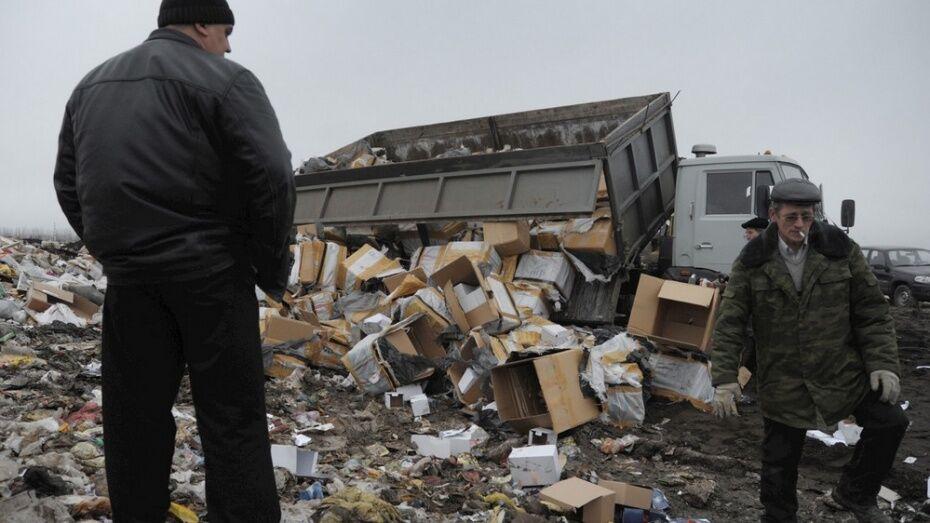 Воронежскую региональную программу по обращению с отходами разработают к июлю