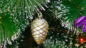 В Воронеже установили первую новогоднюю елку