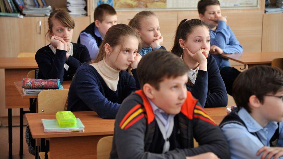 Полицейские расскажут школьникам Воронежской области о безопасном пути в школу