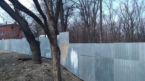Чиновники назвали причину появления строительного забора около Центрального парка Воронежа