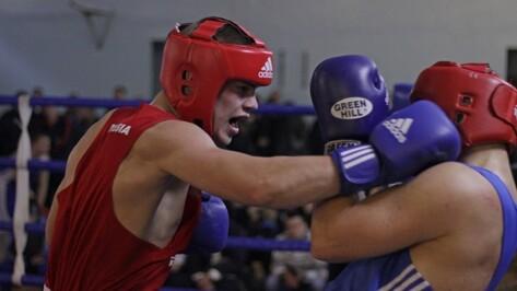 Воронежские боксеры взяли «золото» и «серебро» на всероссийском турнире