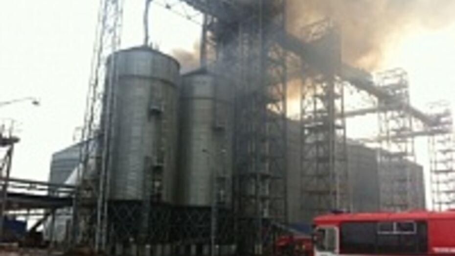 В Воронежской области пожар на заводе подсолнечного масла тушили 2,5 часа