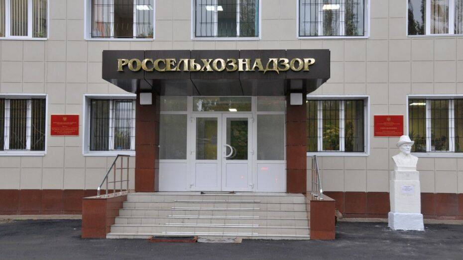 На предприятии в Воронежской области  нашли 200 кг свиной печени с антибиотиками