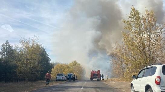 Пожарные пытаются отбить от огня село в Воронежской области
