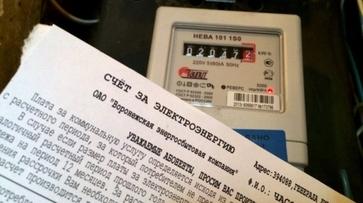 Воронежская прокуратура потребовала заблокировать сайты об «обмане» электросчетчиков