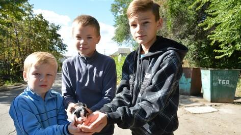 В Острогожске дети спасли новорожденного щенка
