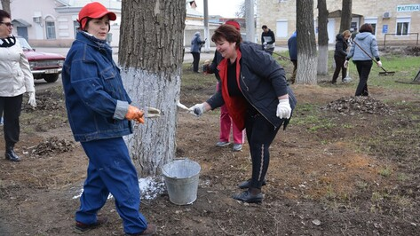 В Поворинском районе на субботник вышли 7,5 тыс человек