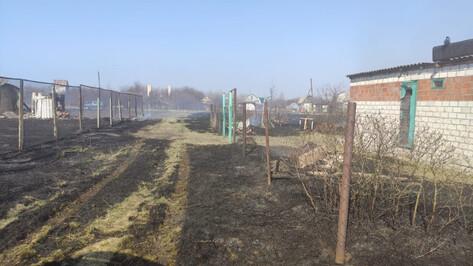 За сутки в Воронежской области произошло 165 пожаров