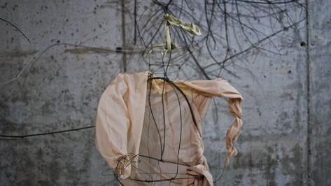 В центре Воронежа появятся скульптуры из ткани и проволоки