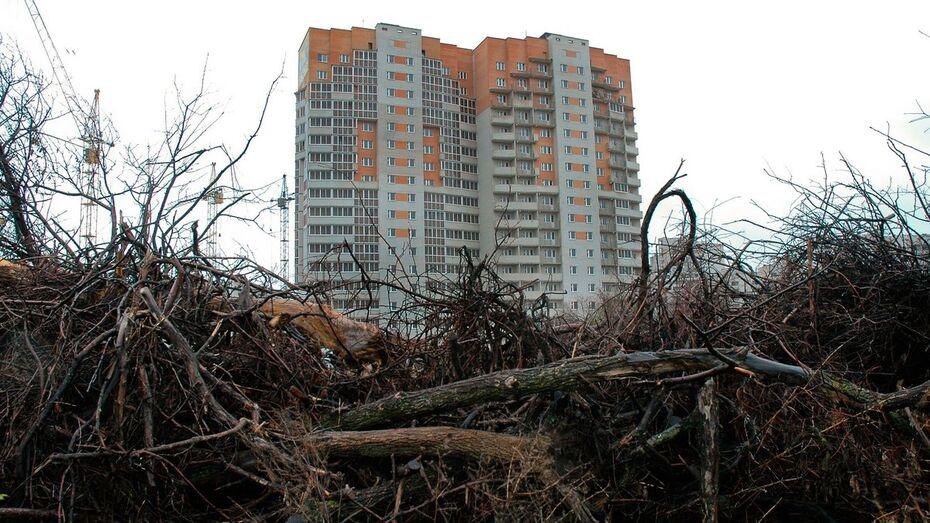 Воронежские строители начали вырубку в яблоневом саду