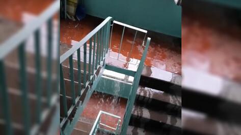 Видео: сломанная труба привела к потопу в подъезде воронежского дома во время ливня