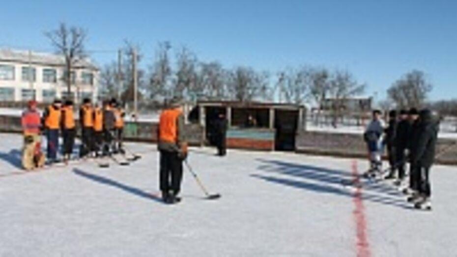 В Верхнемамонском районе открылись ледовые площадки