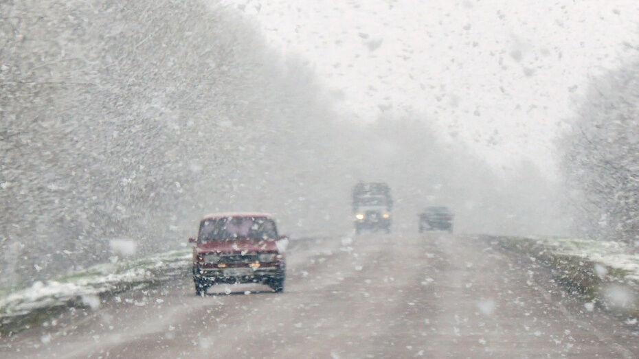 Воронежская Госавтоинспекция напомнила водителям о правилах безопасности при езде зимой