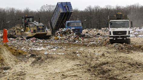 Прокуратура нашла 350 нарушений при проведении мусорной реформы в Воронежской области