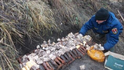 Воронежские взрывотехники уничтожили 118 боеприпасов и 80 кг тротила