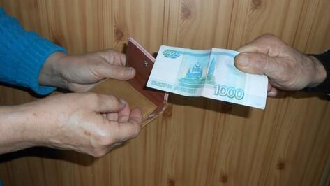 В Воронежской области безработный ограбил пенсионерку