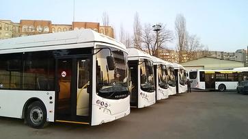 На воронежский маршрут 5А выйдут 20 современных автобусов