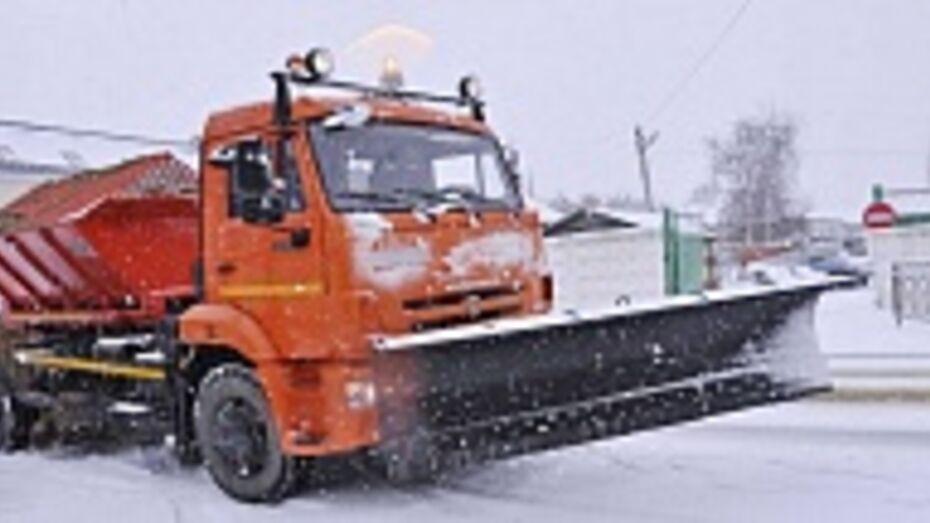 В Бутурлиновку вернулась зима