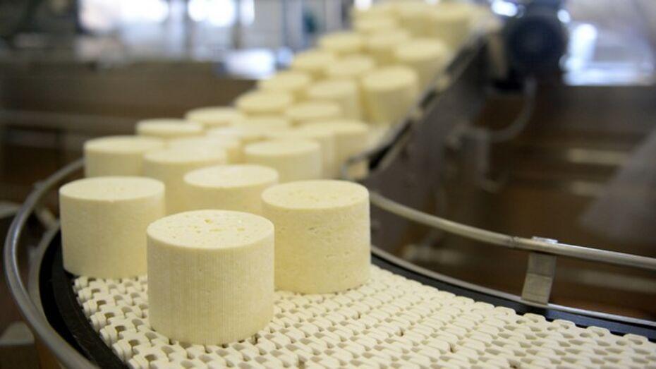 В Воронежской области запустили производство датско-шведского сыра