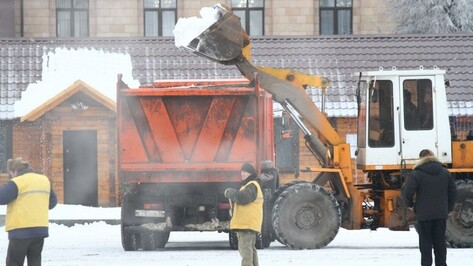 Губернатор назвал неудовлетворительной ситуацию с уборкой снега в Воронеже
