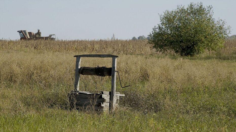 Житель Воронежской области убил соседа топором и бросил тело в колодец