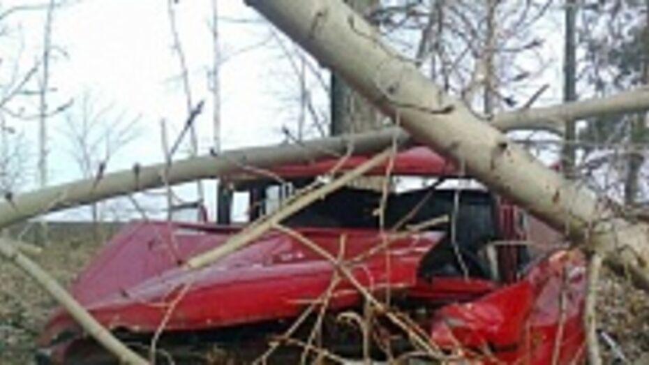 Вчера в Воронежской области произошло 154 ДТП