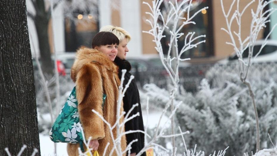 На выходных в Воронеже будет «мягкая» зима
