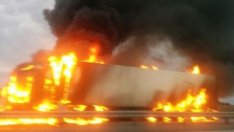 В сгоревшей в Воронежской области фуре было 18 т колбасы