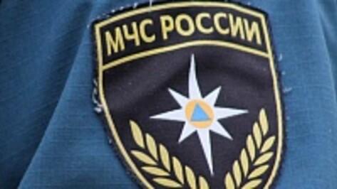 МЧС: сотрудник Госпожнадзора, пойманный в Воронеже при получении взятки, уволен