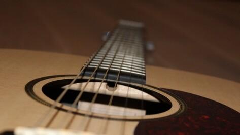 Воронежская библиотека позвала горожан на концерт гитарной музыки