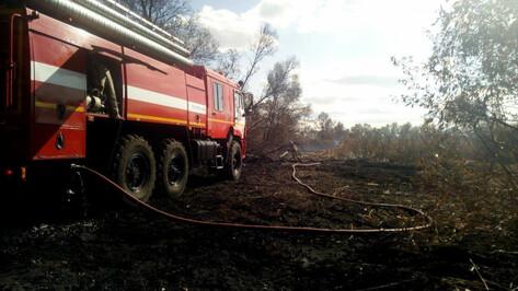 МЧС: площадь тлеющего на окраине Воронежа ила сократилась в два раза