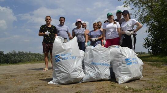 Верхнемамонские активисты очистили от мусора берег Дона