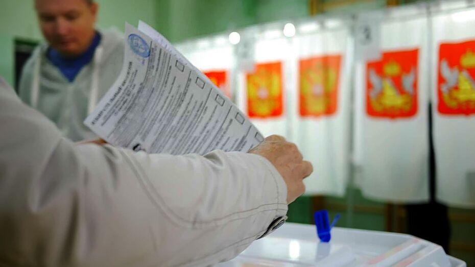 Центризбирком сообщил о подкупе избирателей в Воронежской области