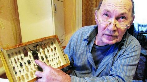 Бобровский энтомолог подарил местному краеведческому музею коллекцию насекомых
